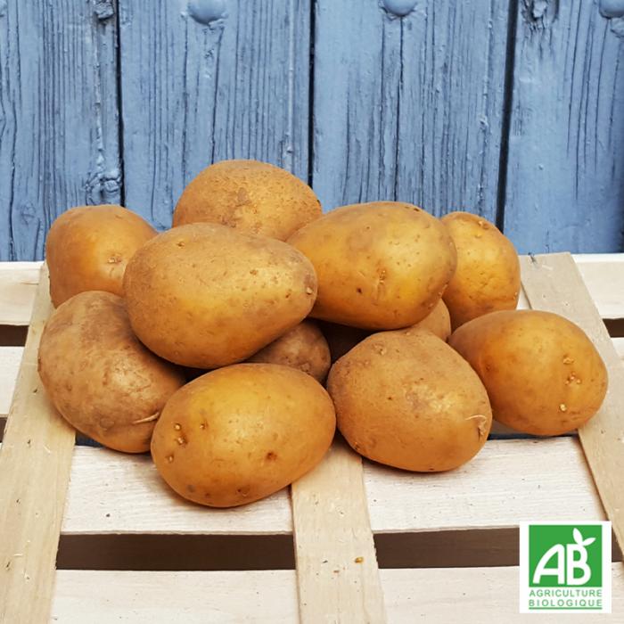 Pomme de terre - Maiwen bio